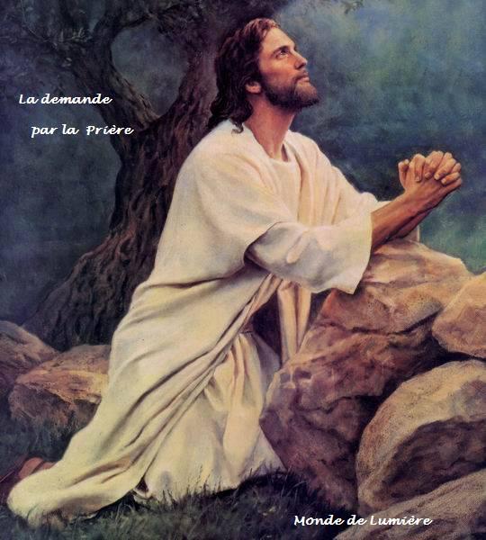 L'aide précieuse de la prière et de la méditation dans Comment se dépolluer l'esprit? 484351_4012119591986_1941458327_n
